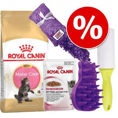 Royal Canin Kattenvoer - Maine Coon Kitten Pakket - Maine Coon Kitten Pakket