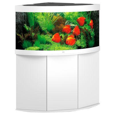 Juwel Trigon 350 -akvaario + akvaariokaappi – pyökki