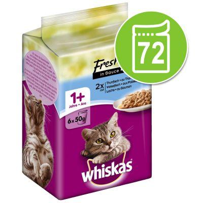 Whiskas Fresh Menue -säästöpakkaus 72 x 50 g - kanaa, kalkkunaa, siipikarjaa kastikkeessa