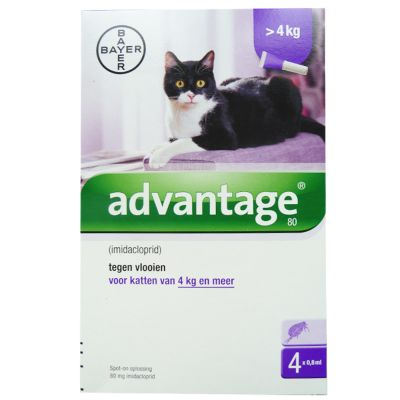 4 Pipetten Advantage® 80 voor katten van 4 kg en meer