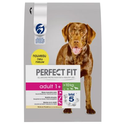 perfect-fit-adult-dogs-10kg-26-kg