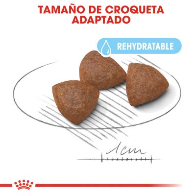Royal Canin Medium Starter Madre y Cachorro