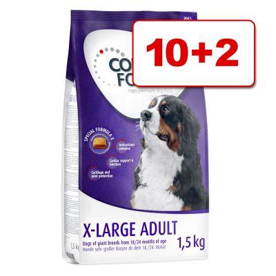 Concept for Life koiranruoka 12 kg: 10 + 2 kg kaupan päälle! - Large Adult