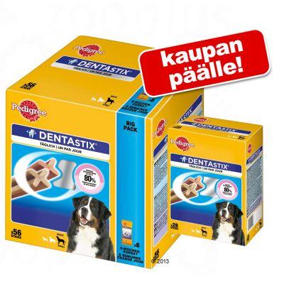 140 kpl Pedigree Dentastix: 112 + 28 kpl kaupan päälle! - Fresh pienille koirille