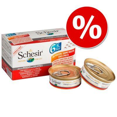 Schesir Small Natural -säästöpakkaus - tonnikala & riisi 24 x 50 g