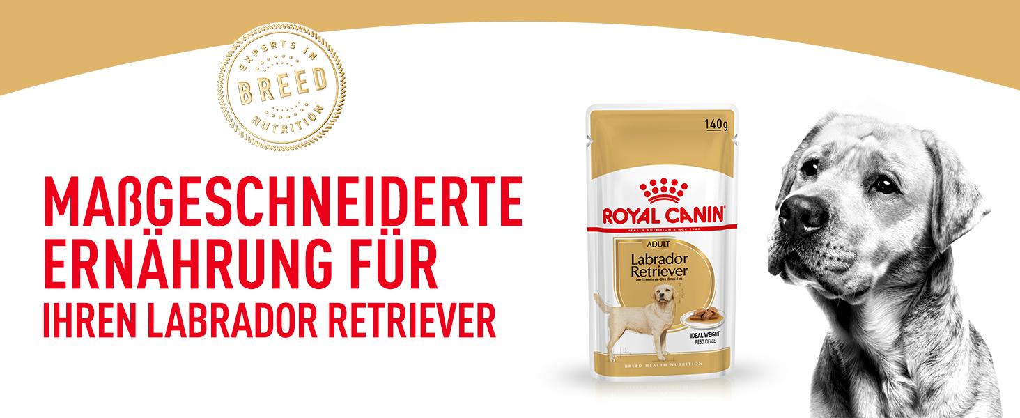 Royal Canin Breed Labrador Retriever Adult