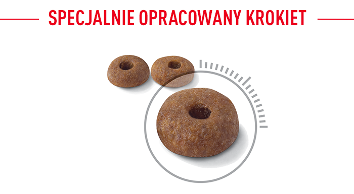 Royal Canin Light Weight Krokettenform