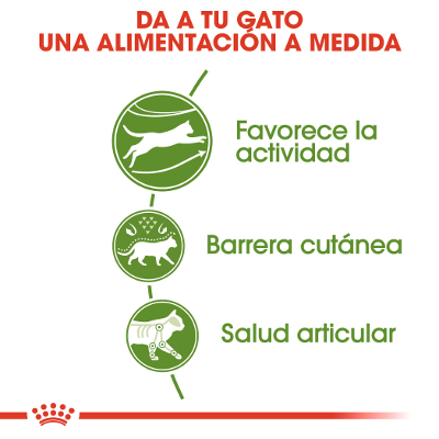 Royal Canin Active Life Outdoor