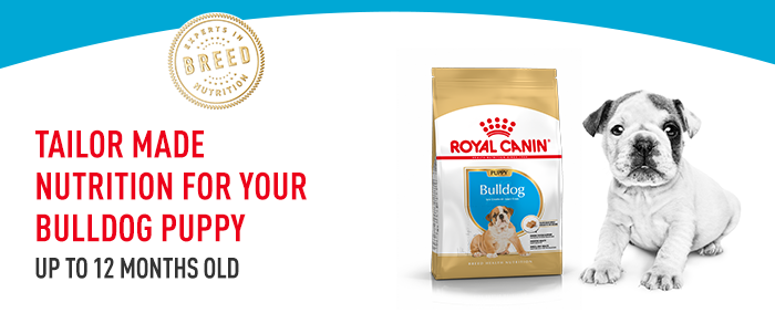 Royal Canin BHN Bulldog Puppy