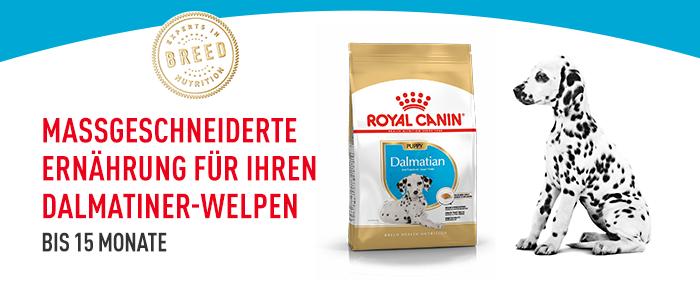 Royal Canin Dalmatiner Puppy Trockenfutter
