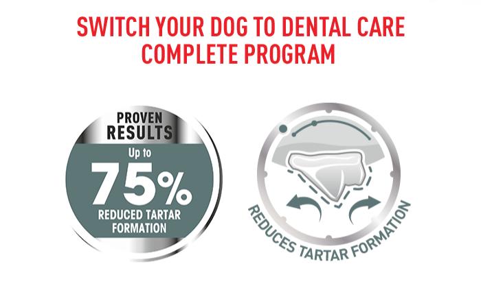 Royal Canin Dental Care nachweisbare Ergebnisse