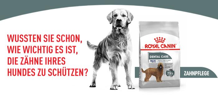 Royal Canin Dental Care Maxi
