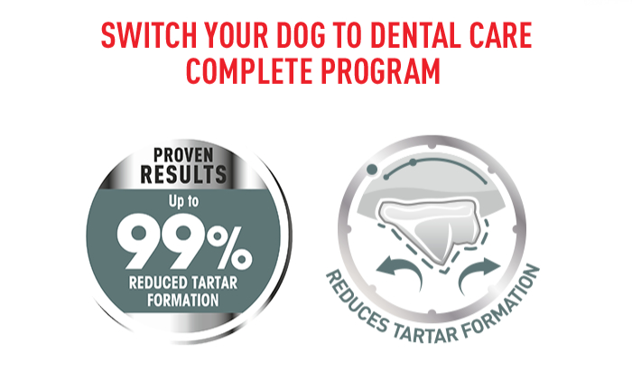 Royal Canin Dental Care Medium Nachweisbare Ergebnisse