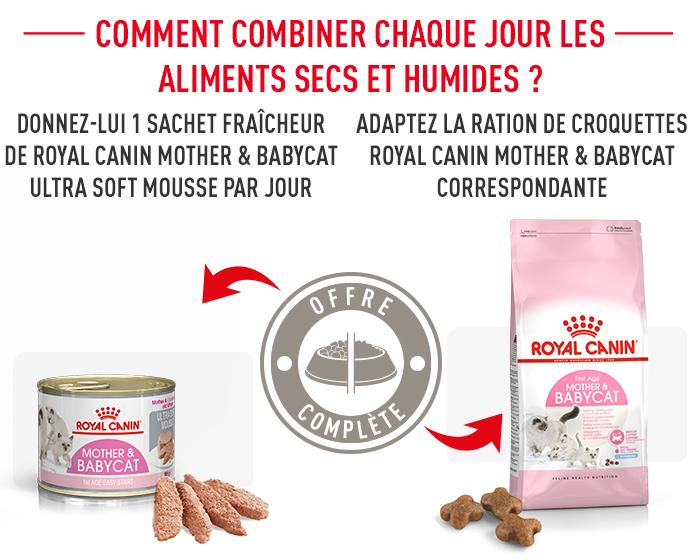Royal Canin Mother Amp Babycat Croquettes Pour Chatte Et