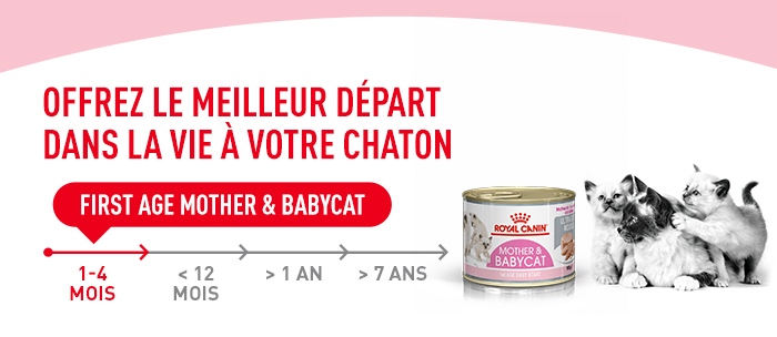 Royal Canin Mother Amp Babycat Mousse Ultra Tendre Zooplus