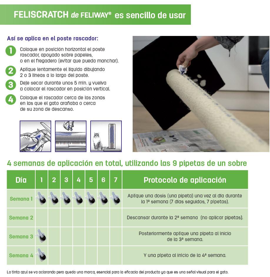 como usar feliscratch