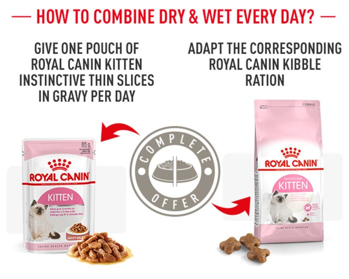 Royal Canin Kitten Buy Now For Less At Zooplus