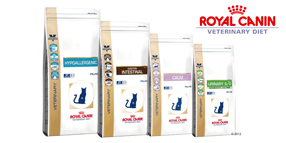 Royal Canin Veterinary Diet für Katzen