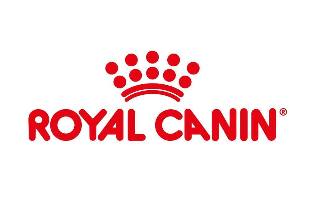 Croquettes Royal Canin pour chat