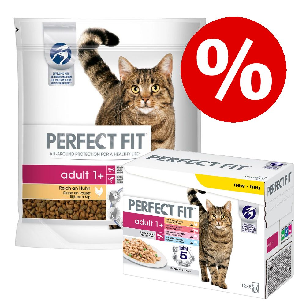 Sparpris! 5 x 1,4 kg Perfect Fit torrfoder + 48 x 85 g Mix våtfoder - Active 1+ Nötkött