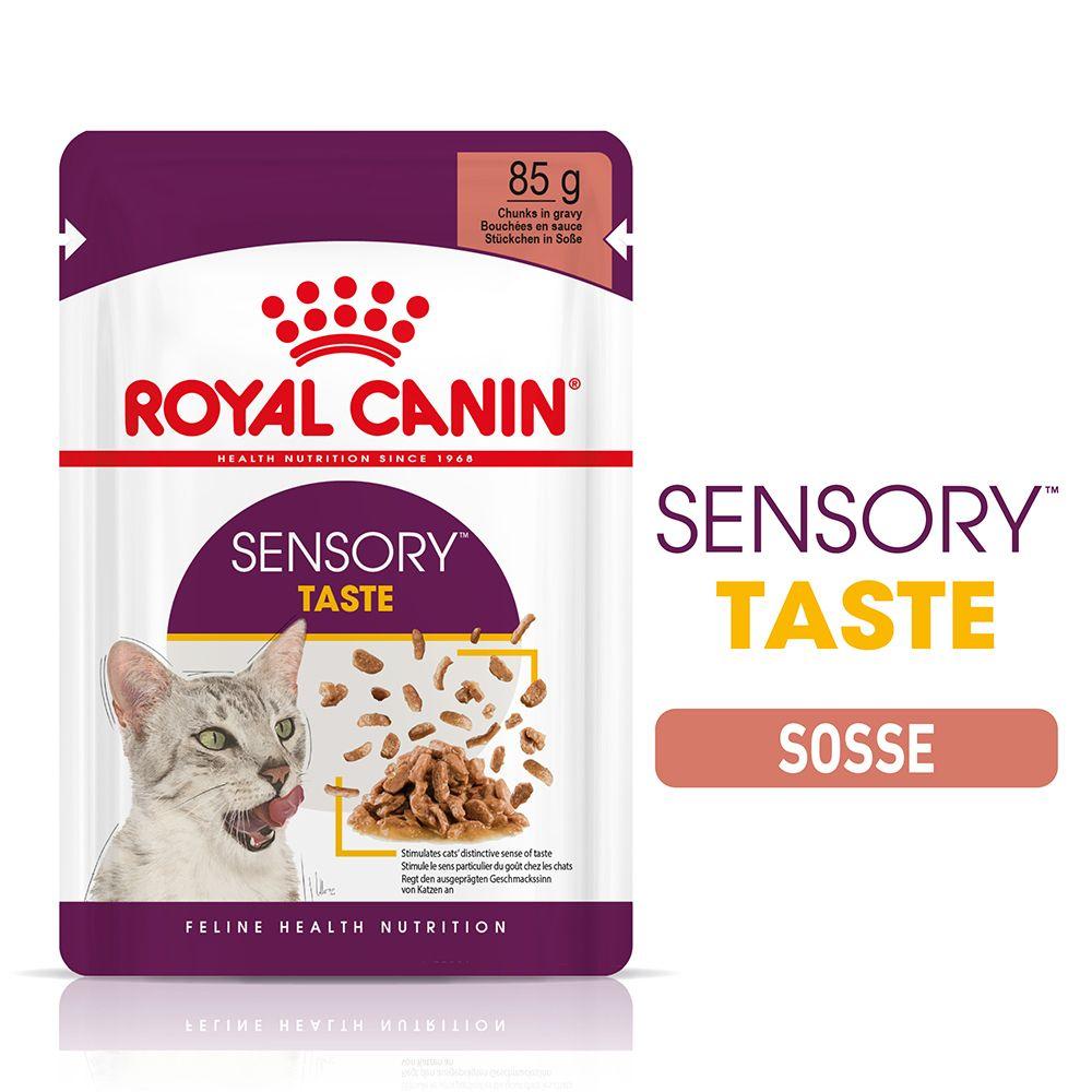 Royal Canin Sensory Taste in Sauce - 24 x 85 g