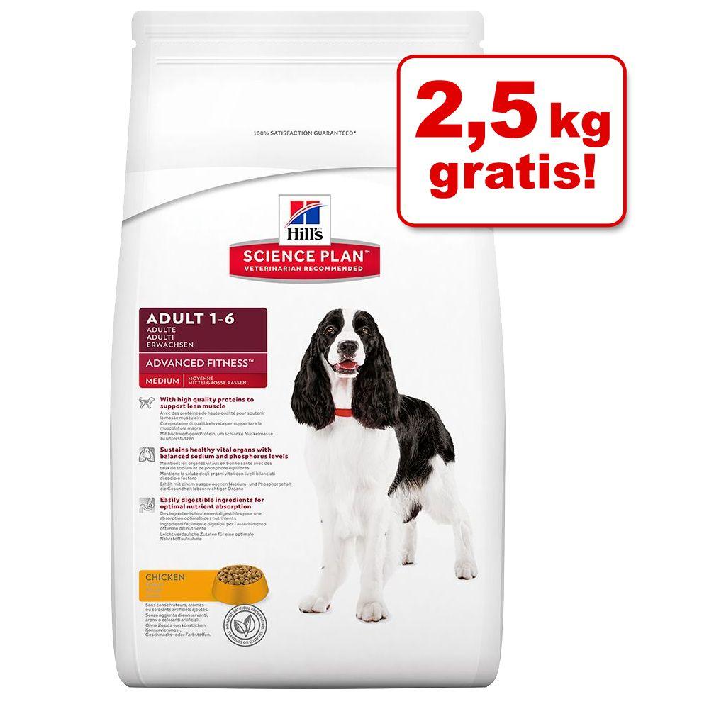 12 kg + 2,5 kg gratis! 14,5 kg Hill´s Hundefutt...