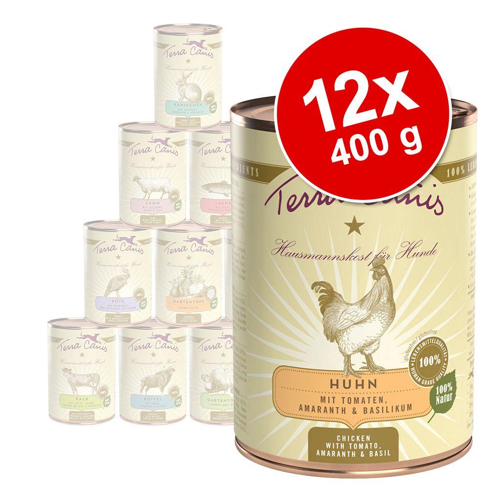 Korzystny pakiet Terra Canis, 12 x 400 g - Indyk z brokułami, gruszką i ziemniakami