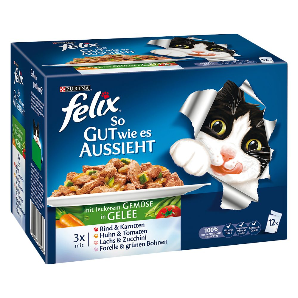 12 x 100g Felix Wet Cat Food