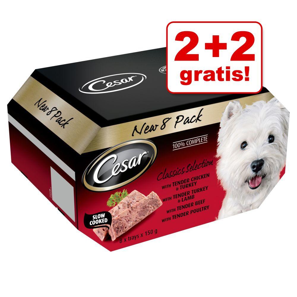 Image of 4 + 4 gratis! Set misto Cesar 8 x 150 g - Ricette Classiche