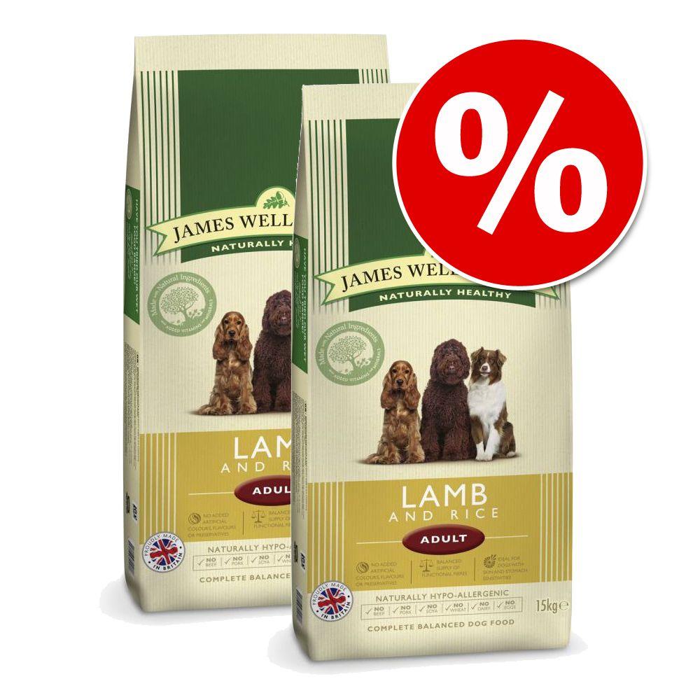 Ekonomipack: 2 x 10/15 kg James Wellbeloved hundfoder - Adult Large Breed Lamb & Rice (2 x 15 kg)