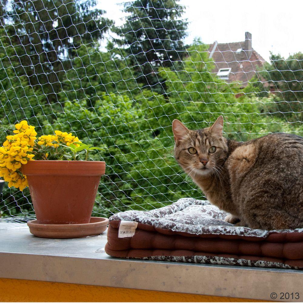 Siatka ochronna dla kota, przezroczysta - 2 x 1,5 m