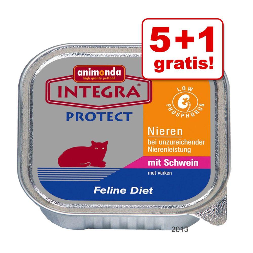 5 + 1 gratis! 6 x 100 g Integra Protect & Sensitive - Nieren Schwein