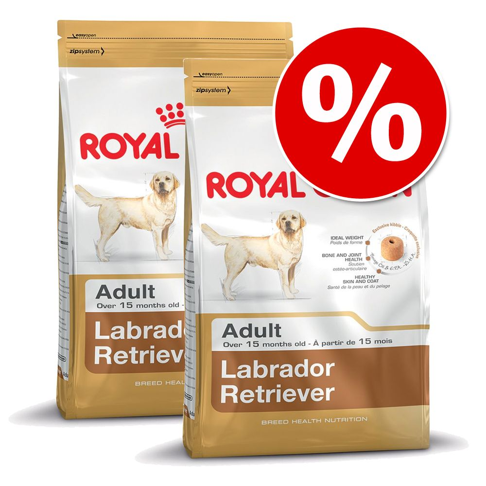 Ekonomipack: 2 eller 3 påsar Royal Canin Breed - Chihuahua Adult (2 x 3 kg)