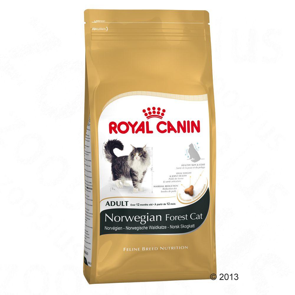 royal-canin-adult-norveg-erdei-macska-400-g