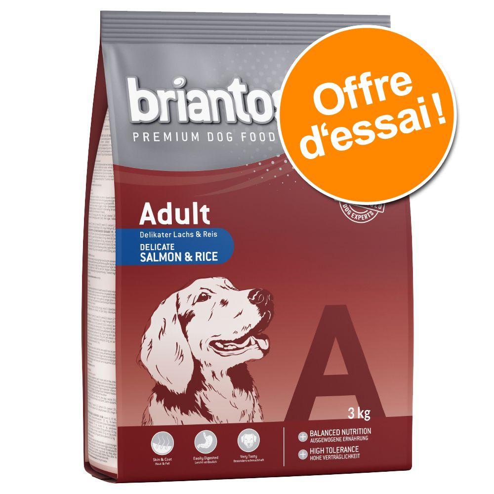 Chien Croquettes ★ Briantos Offres découvertes Briantos