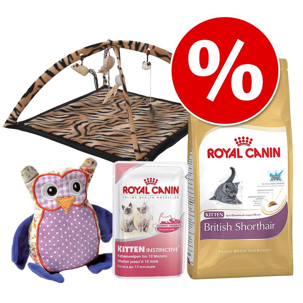 royal canin kitten british shorthair 2 kg. Black Bedroom Furniture Sets. Home Design Ideas