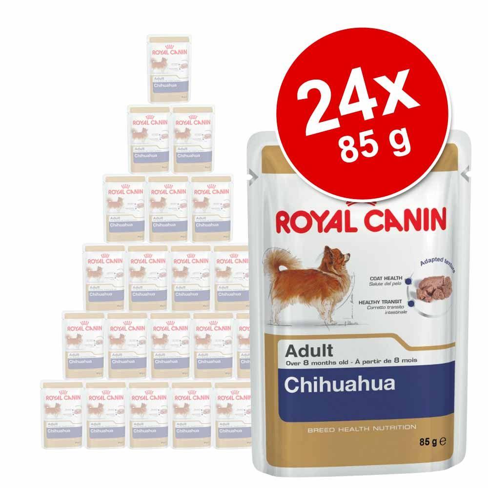 Korzystny pakiet Royal Ca