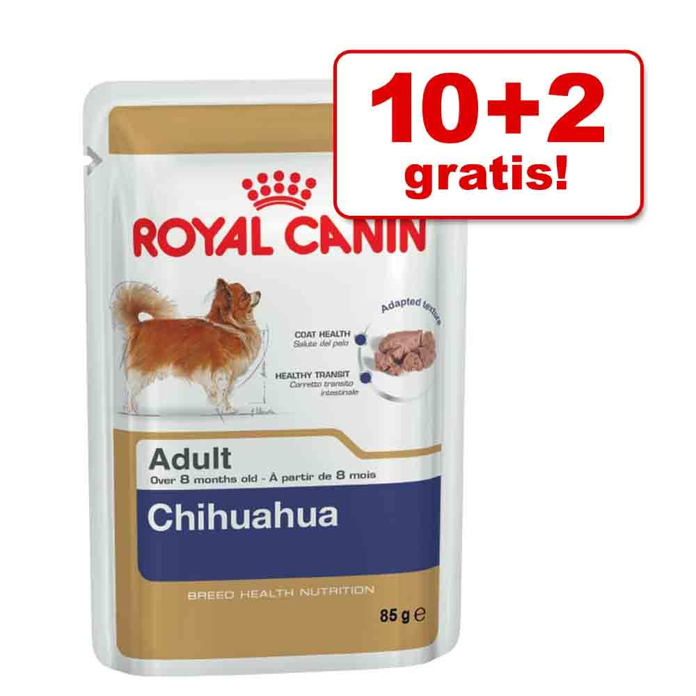 10 + 2 gratis! Royal Canin Breed, 12 x 85 g - Poodle