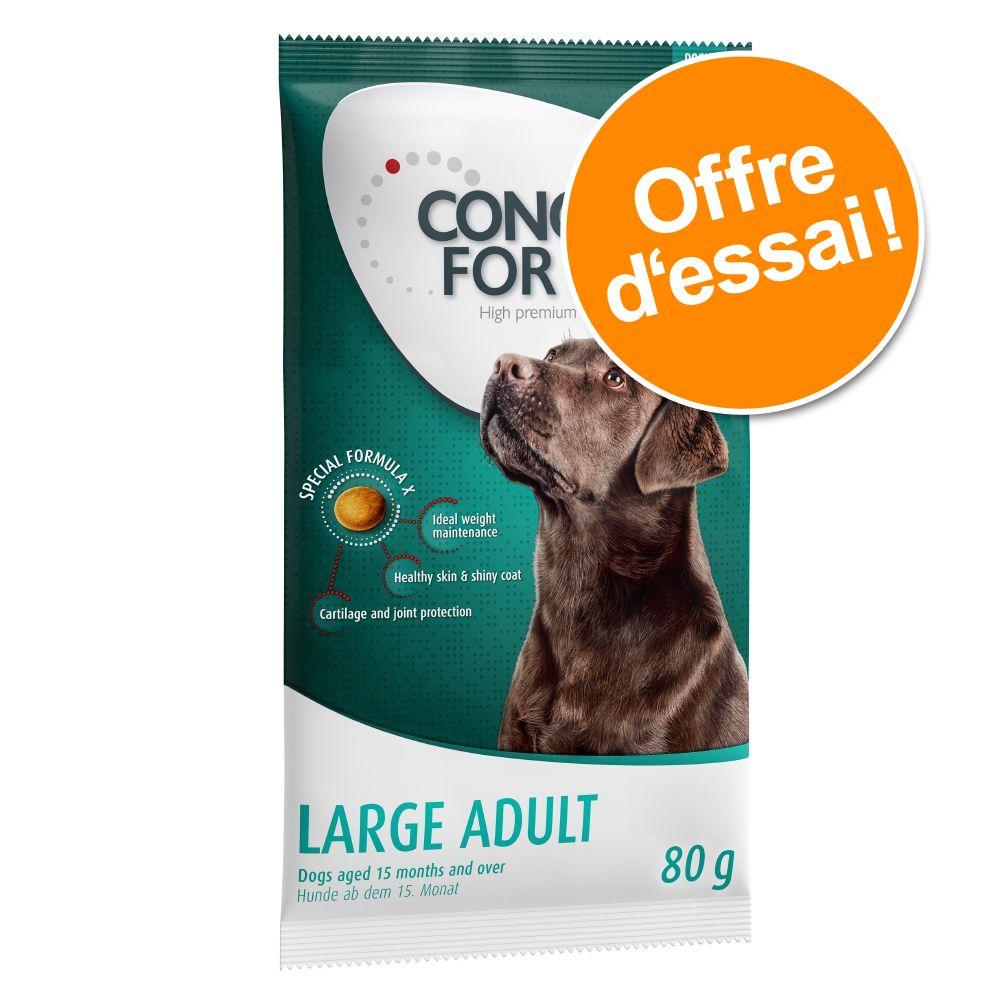 À découvrir : Concept for Life 80 g pour chien de grande taille à prix ultra mini - Labrador Retriev