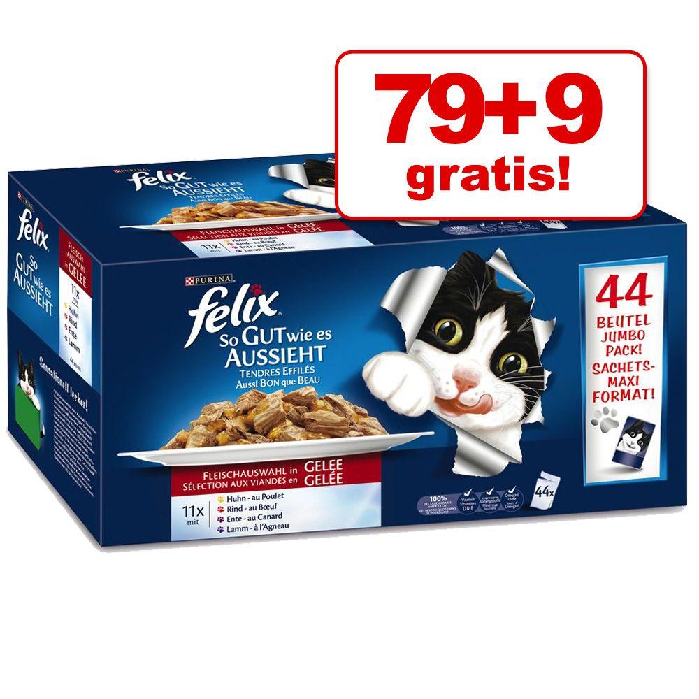 79 + 9 gratis! Felix Fantastic, 88 x 100 g - Mięsne smaki
