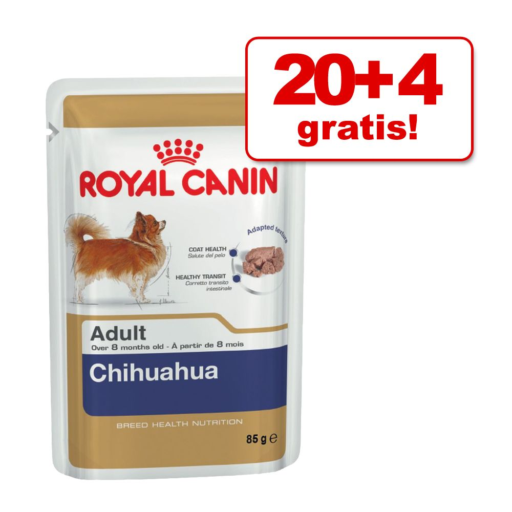20 + 4 gratis! Royal Canin Breed, 24 x 85 g - Chihuahua