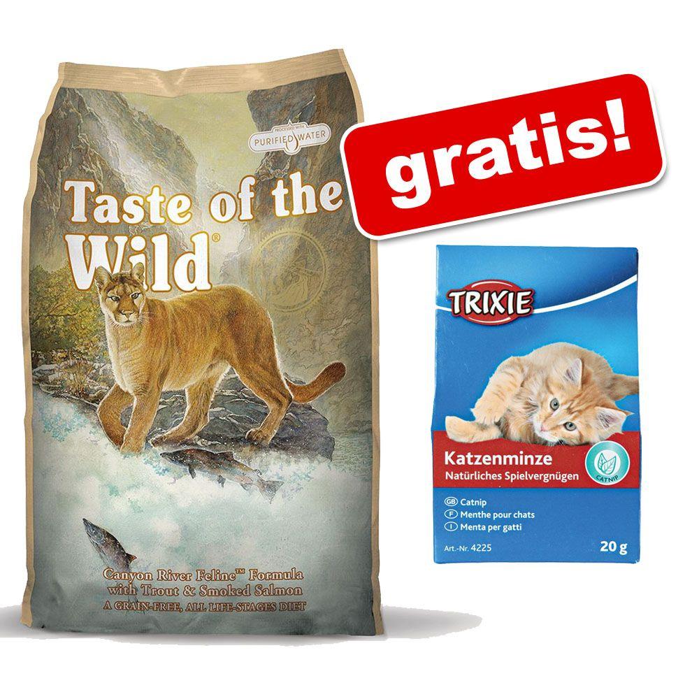 7 kg Taste of the Wild dla kota + Kocimiętka gratis! - Rocky Mountain Feline