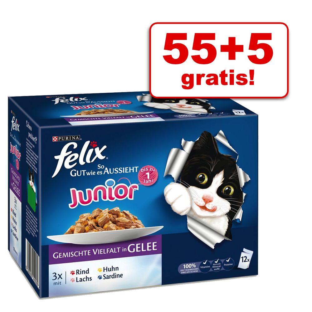 55 + 5 gratis! Felix Juni