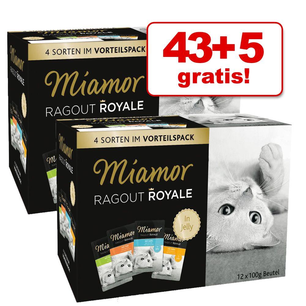 43 + 5 gratis! Mieszany megapakiet Miamor Ragout Royale, 48 x 100 g - Kitten, Drób i wołowina w galarecie