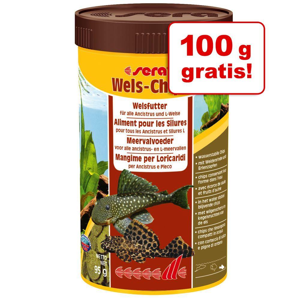 100 g gratis! Sera Wels-Chips Pokarm w tabletkach, 250 g - 250 ml