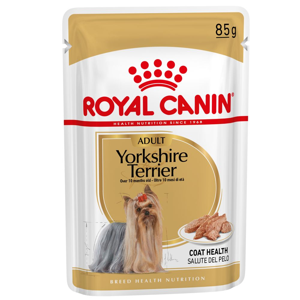 Yorkshire Tierrier Royal Canin Wet Dog Food