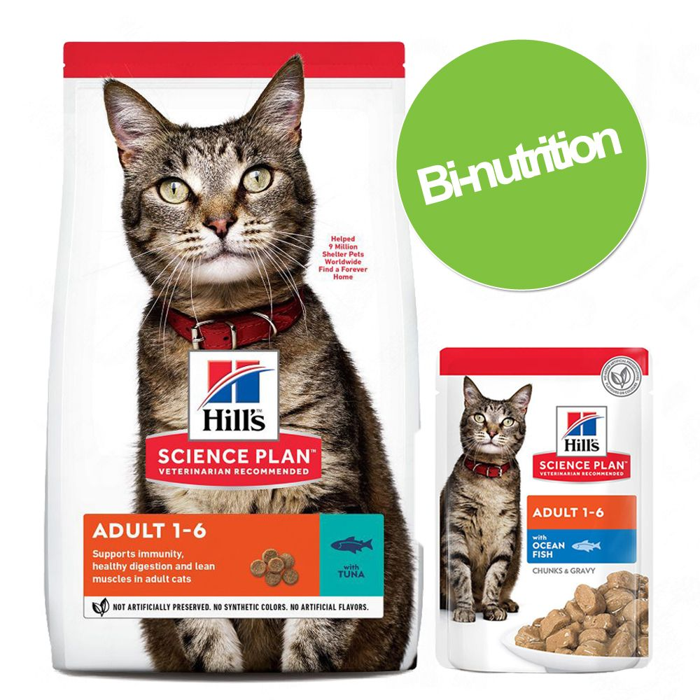 Pack Kitten Healthy Development Hill's Science Plan : croquettes et sachets - Nourriture pour chat