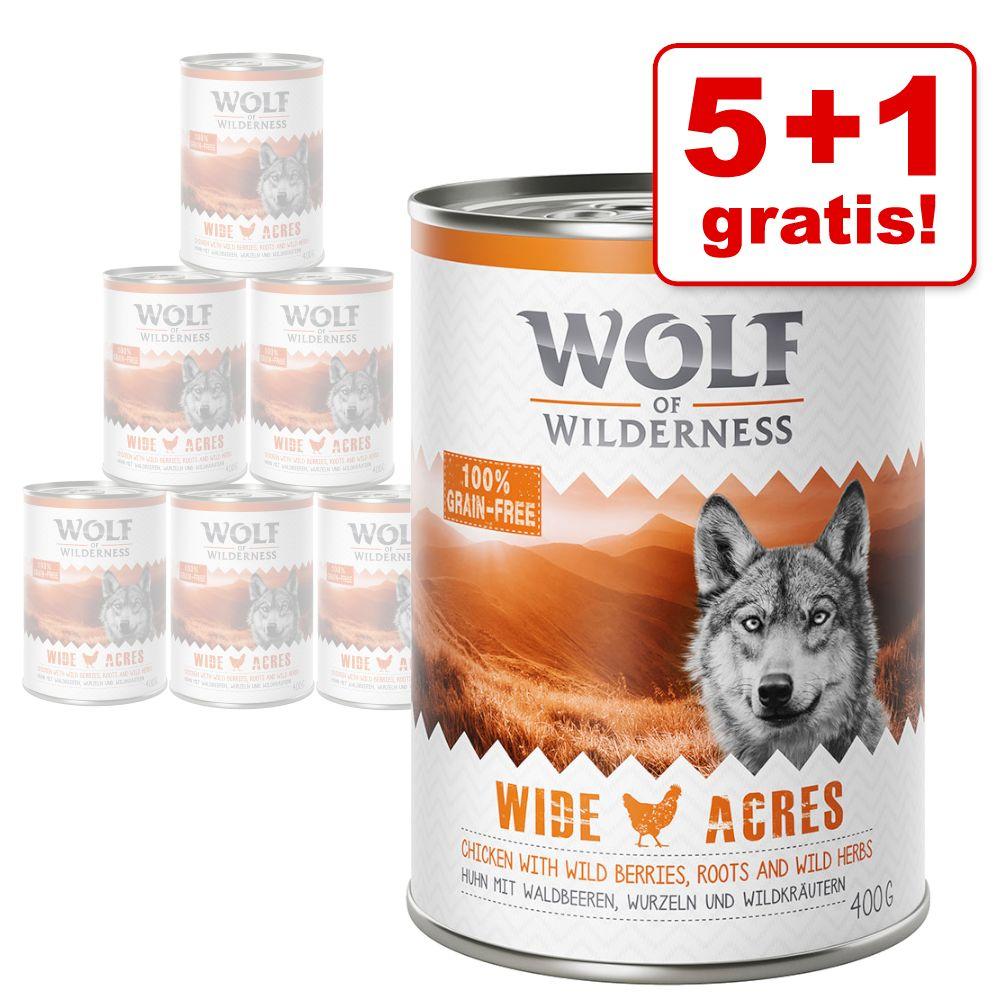 5 + 1 på köpet! 6 x 400 g Wolf of Wilderness våtfoder - Oak Woods - med vildsvin