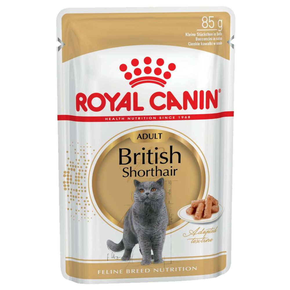 British Shorthair Royal Canin Breed Cat food Pouches