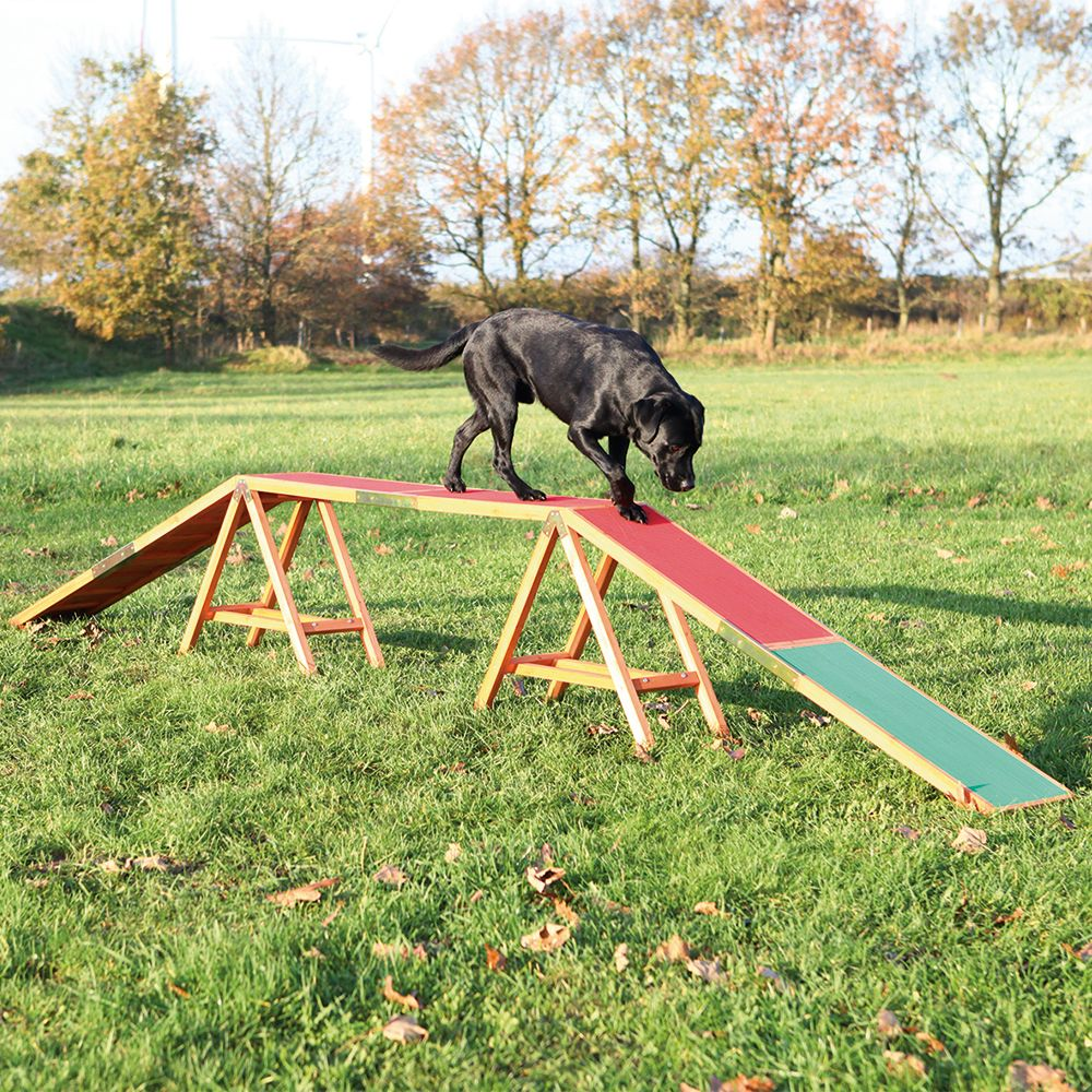 Improve your dog's movement, balance and fitness with this Trixie Dog Agility Bridge, offering the opportunity to train your dog's motor skills and keep fit and ac...